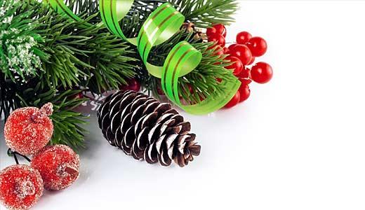 高島屋の陶器のクリスマスギフト アルザス陶器 X'masミニタジン