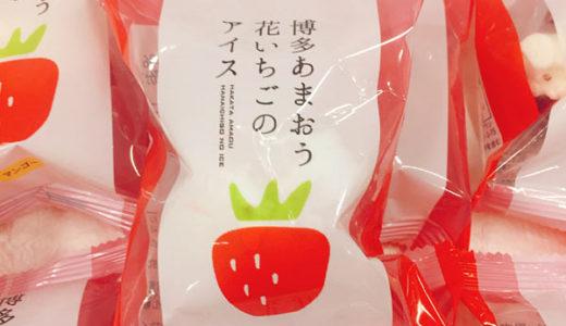 大丸松坂屋 アイスのひんやりギフト あまおう、レモン牛乳アイス、千本松牧場