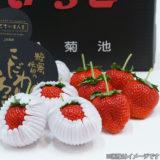 <熊本>糖蜜いちご