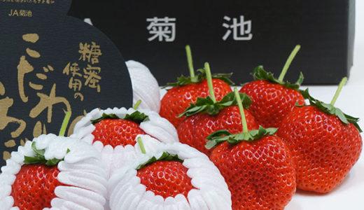 大丸松坂屋の今が食べごろ、イチゴのギフト